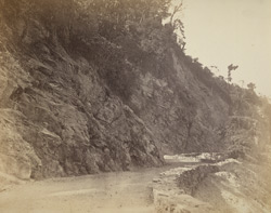 Darjeeling Hill Road. Section of Gyabarry Cutting.